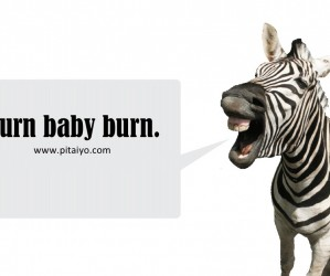BURN: The Zebra